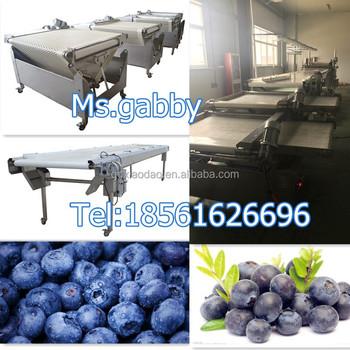 blueberry sorting machine