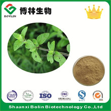 High Quality Melissa Officinalis Extract Flavonoids 1%~5%