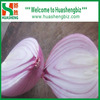 /product-detail/2017-chinese-fresh-onions-60063672527.html
