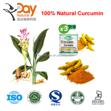 ChineseTurmeric Extract Powder supply