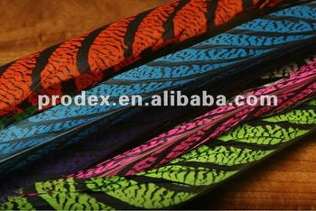 Color dyed Lady Amherst Pheasant tail feathers