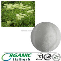 Hot sale Audited Supplier Provide Ligusticum chuanxiong Extract 99% Ligustrazine