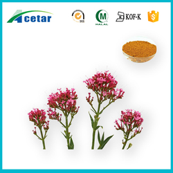 pure natural valerian flower extract cheap price valerian super calm