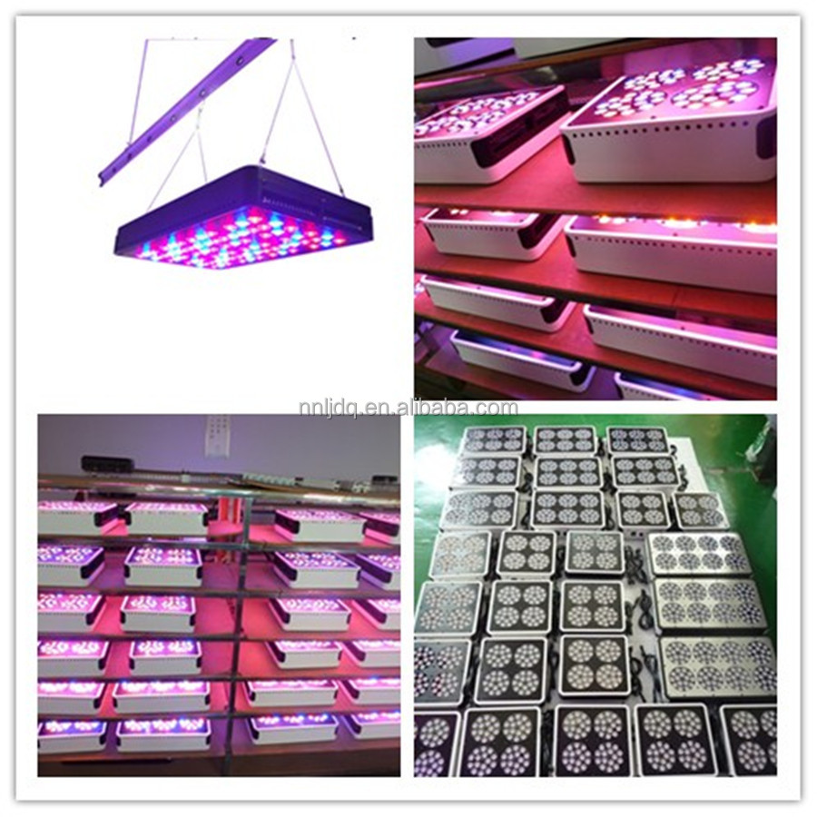 Apollo led grow light with 5w led chip for commercial grow, greenhouse project, hydroponic system Apollo 8 led grow light