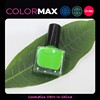 Professional Private Label Nail Polish Halal