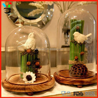 Made in China Wholesale Price Protect Item Decoration Glass Dome with Wood base