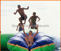 10-20Passenger CE ISO9001Giant Inflatable Water Slide for Adult Inflatable Slide