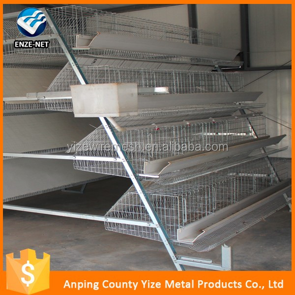 A type chicken broiler farm house/A type layer chicken battery cage for chicken farm for sri lanka