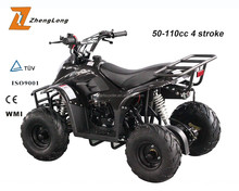 Hot sell cool sports custom taotao atvs engine for sale