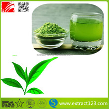 Low calories in matcha green tea powder Lose weight