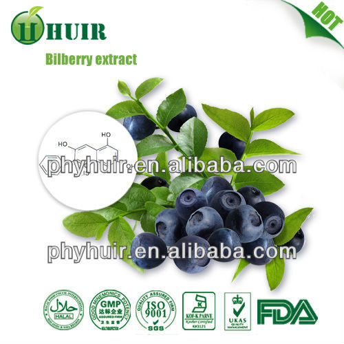 Natural extracts High quality bilberry extract/bilberry p.e./bilberry/anthocyanidin