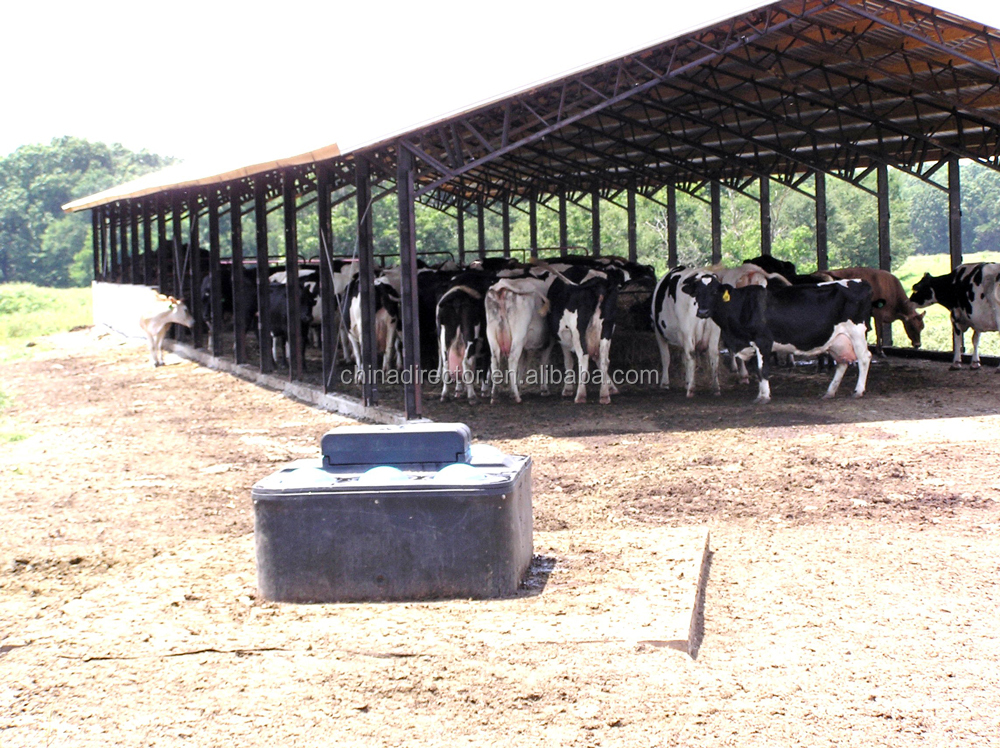 Q235 steel frame prefab cattle and chicken house and shed and farm and