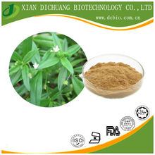 Anti-bacteria natural Hedyotis Herb Extract Powder 20:1 /Hedyotis Herb P.E