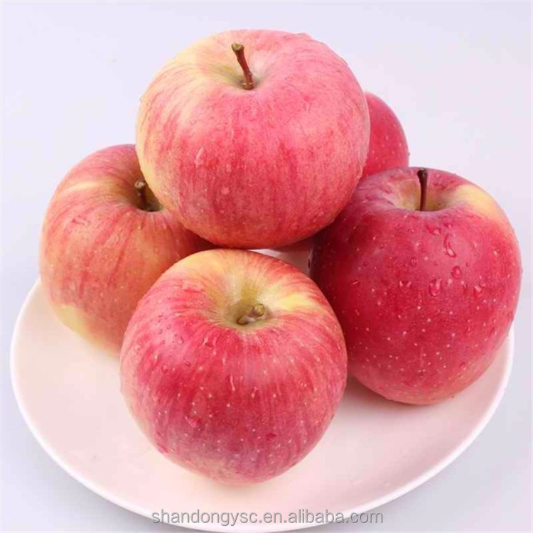 wholesale prices apple fruit fresh gala apple