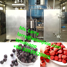 freeze dehydration machine/fruit vacuum freeze drying machine/food vacuum dehydrator