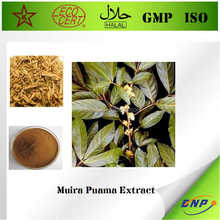 BNP ISO/HALAL/KOSHER/GMP factory supply 100% natural for man 10:1 Muira Puama Extract