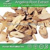 1kg Plant Herbal Angelica Extract (Latin name: Radix Angelicae Sinensis)