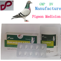 poultry herbal medicine baicaojueyi tablet from Veterinary drug companies