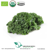 Manufacturer wholesale pure dried kale powder canned and bulk