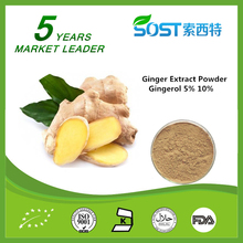 High Quality 10% Gingerol Ginger Extract Powder Water Soluble