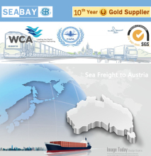 Competitive Logistics Distributors Companies from China to Sydney Australia