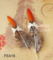 Pheasant Tail Natural Feathers
