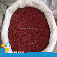 High grade Natural Food Colorant Red Fermented Rice Red Yeast Rice Organic Red Rice from Food Colorants Supplier