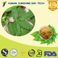 CAS NO.: 9000-71-9 100% Natural Mimosa Hostilis Root Bark P.E.