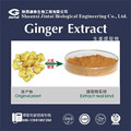 100% Natural Ginger extract 5% 8%gingerol