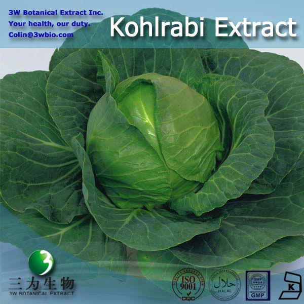 3W GMP factory Kohlrabi Extract for your health