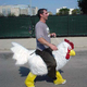 Hola chicken-rider mascot costume/riding chicken costume/mascot costume adult