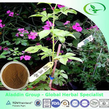 medicinal plants herbs, eleutheroside B+E,used for anti-fatigue