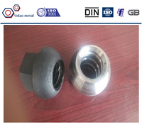 High tension Dome nut of M25 thread bar,Zinc plated domed nut,Rock bolt nut