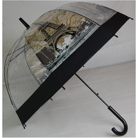 special wooden handle Eiffel Tower photo umbrella