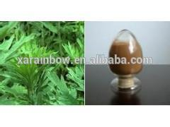 factory supply wormwood extract 99% artemisinin with high quality