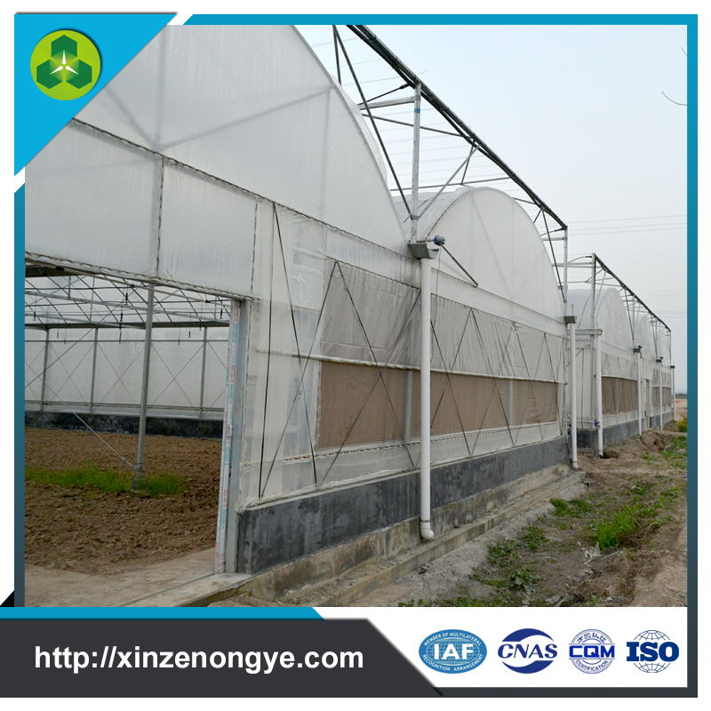 Mordern used blackout plastic film greenhouse frames for sale