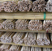 hot sale high quality bamboo pole