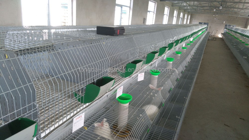 ISO approved laboratory animal cage ISO certificate wire rabbit cages sale (12 rabbits)