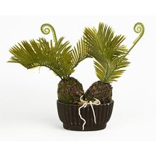 Hot sale superior quality bonsai tree, ornamental indoor artificial cycas tree