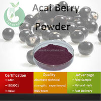 Acai Berry Juice/Acai Berry Wholesale/Acai Berry Powder
