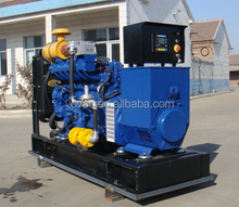 Hot Sale Home Use 15kw Gas Generator For Natural Gas/ Biogas/ Lpg!!!