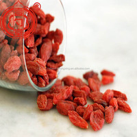 Berry goji china certified organic dried ningxia goji berry fruit wholesale distributor with low price