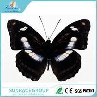 Multifunctional 1.2m giant butterfly butterfly christmas garland make butterfly with great price