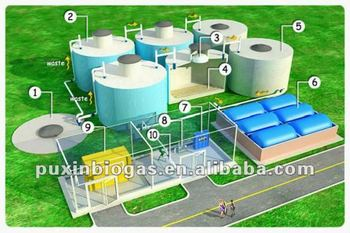 PUXIN medium and large size biogas project