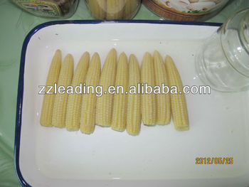 Canned Baby Corn Whole /Cut