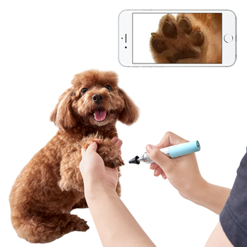 Latest Wifi Wireless Endoscope For Pet Check and Inspection with HD Camera for Android and IOS Smartphone iPhone Samsung Tablet