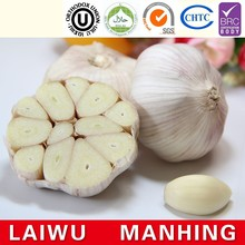 Common Cultivation Liliaceous Vegetables garlic fresh