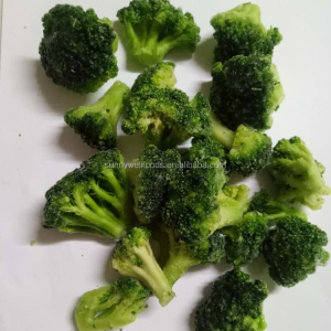 IQF Broccoli Deep Frozen Vegetable
