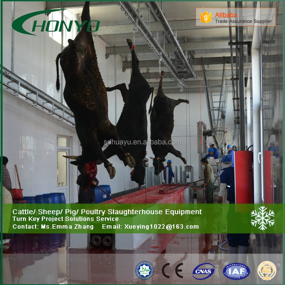 Halal Turkey cattle cow Livestock slaughterhouse machine meat processing equipment