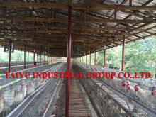 taiyu small poultry house for layer cage